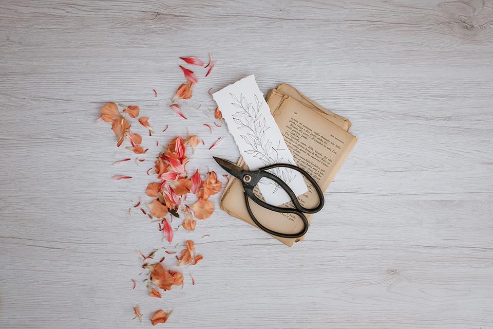 Aine Elopement - Matrimonio intimo